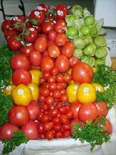 Fresh Tomatoes - Yellow Tomatoes, Grape Tomatoes, Cherry Tomatoes, Roma Tomatoes, Cluster Tomatoes, Tomatillos, 5X6's, 6X6's, 6X7's.